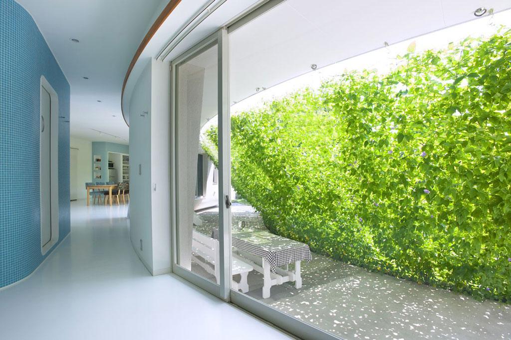 Mảng tường xanh - sống trong lành