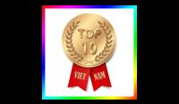 Top 10 Việt Nam
